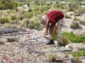 Tranquera Patagonica