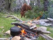 Das Feuer muss warten