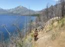 Am Lago Epuyen